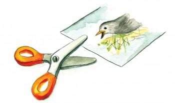 Svoboda_Tzekova_illustration
